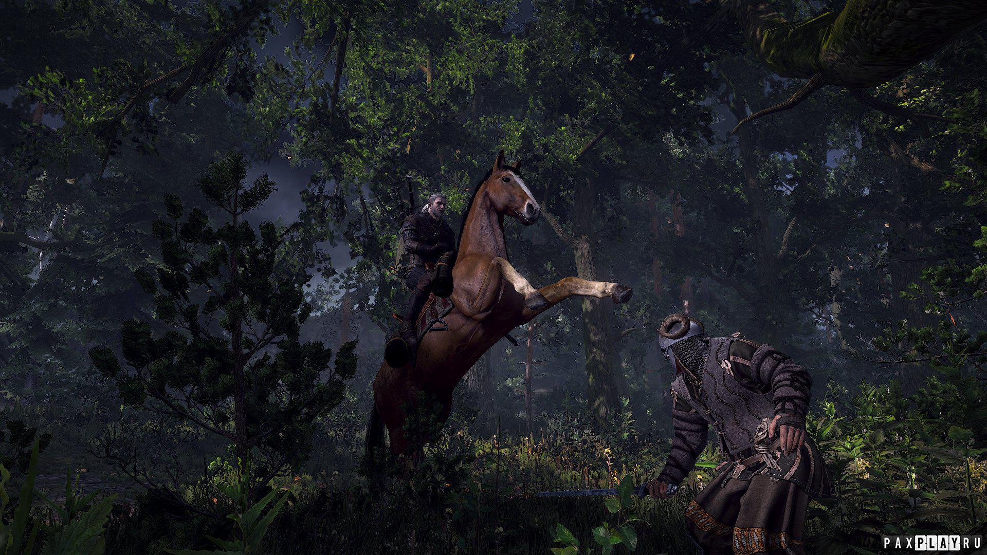 В The Witcher 3: Wild Hunt реализуют новую боевую систему